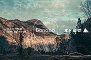 BONOBO Live in Beirut