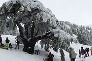 B2h Barouk to Amiq snowshoeing
