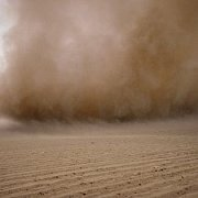 Exhibition Opening & Talk | Knots'n Dust by Francis Alÿs