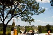 The Languedoc Culinary and Wine Experience