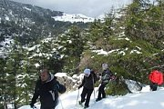 Snowshoeing Tannourine Natural Reserve with Wolves Clan