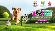 WoofFest - Beirut - The Biggest Festival for dogs and their people