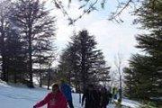 Snowshoeing Hadath el Jebbeh   ProMax