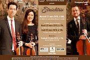 """Concert """"Streichtrio"""""""