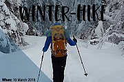 Athletes In Action Winter Hike