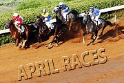 April's Afternoon Races!