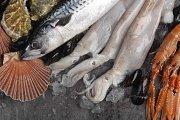 Fish-based Stocks & Soups - Cooking Class at Le Cordon Bleu