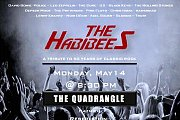 The Habibees @ the Quadrangle Hazmieh
