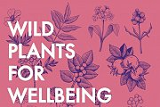 Wild Plants For Wellbeing