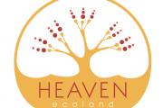 Heaven Door's Opening