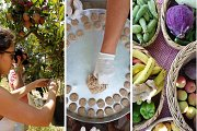 Rural Lebanese Cooking Course with Lunch in Aqoura - Full Day