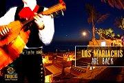 Los Mariachis at The Maracas Playa! Mariachis by the Beach