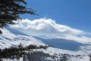 Zaarour snowshoeing with Vamos Todos
