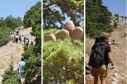 Shouf Biosphere - Guided Hike with Lunch
