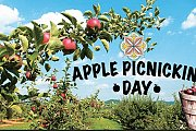 Apple Picnicking Day!