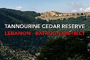 Tannourine Cedars Reserve with We Are Hikers