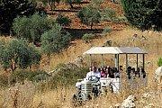 Wine Tour Bekaa with Vamos Todos