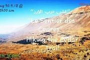 """Sur le Sentier des Cèdres"": Hiking the Cedars Trail with GREEN STEPS"