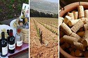 Beqaa Wine Tour and Tasting with Living Lebanon