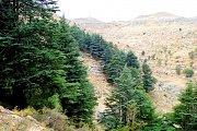 Arez Karem Mohor Hike with Wild Adventures