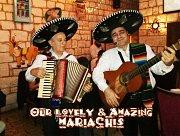 Los Mariachis Fiesta