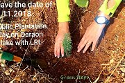 Public Planting Campaign Day with GREEN STEPS