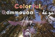 The Golden Forest Hike - Ammouaa Akkar   HighKings