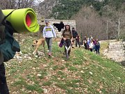Yogis & Dogs Enjoying Kfardebian Valley With Ziad