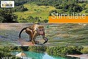 Le Sri Lanka à la Tourleb - Trip from Lebanon