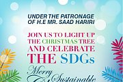 Light Up our Christmas SDG Tree!
