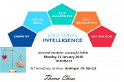 Emotional Intelligence: Personal Mastery, Successful Habits