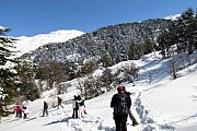 Snowshoeing Ehden Nature Reserve with Wolves Clan