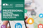 Professional Digital Marketing Diploma