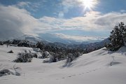 Snowshoeing with GREAT ESCAPE in Tannourine Cedars Reserve