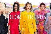 Your Best Colours & Style Workshop!