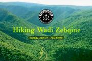 Hiking Wadi Zebqine with Wild Explorers