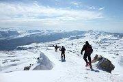 SNOWSHOEING IN CEDARS with Skyline team