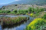 Hiking Ammiq Wetlands with Lebanese Explorers