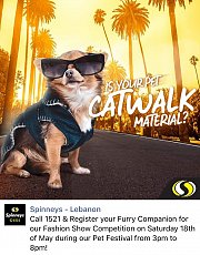 """""""Is Your Pet Catwalk Material?""""  Runway Pet Fashion Show @ Spinneys Hazmieh Pet Festival"""