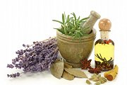Free Intro to Homeopathy