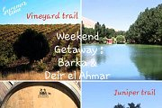 Weekend getaway by the Junipers & the Vineyards with Green Steps