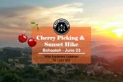 Cherry Picking & Sunset Hike