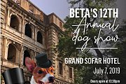 BETA's 12th Annual Dog Show