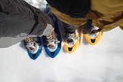 Randonnee raquette - Snowshoeing day for Scouts & friends