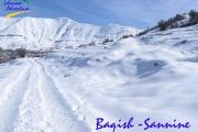 Snowshoeing Baqish- Sannine with Lebanese Adventures