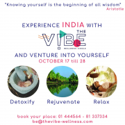 Ayurveda Trip to India with The vibe wellness circle