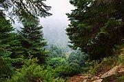 Hiking al Qobayat Akkar with Golden Feet