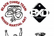 First Street Combatives seminar at Colonel Beer