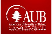 AUB Youth Research Working Group