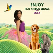 Real Animal Shows